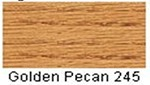 Minwax Golden Pecan